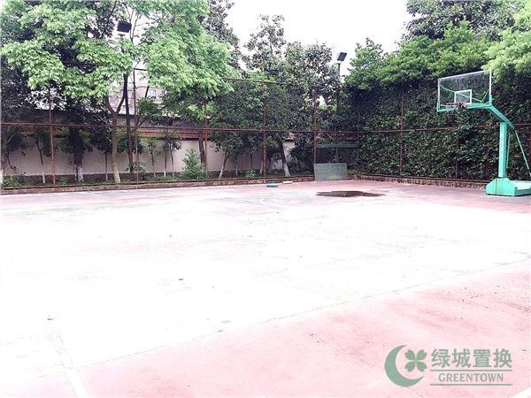 小区篮球场